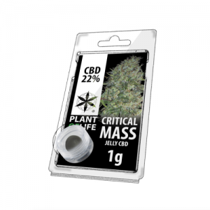 Critical mass Hemp hash