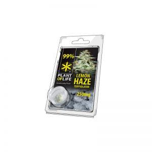 Lemon Haze Terpsolator