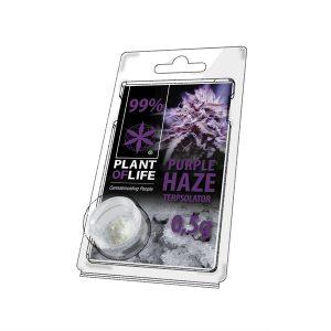 Purple Haze CBD Terpsolator